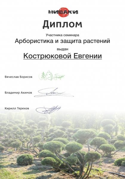 kostrukova1